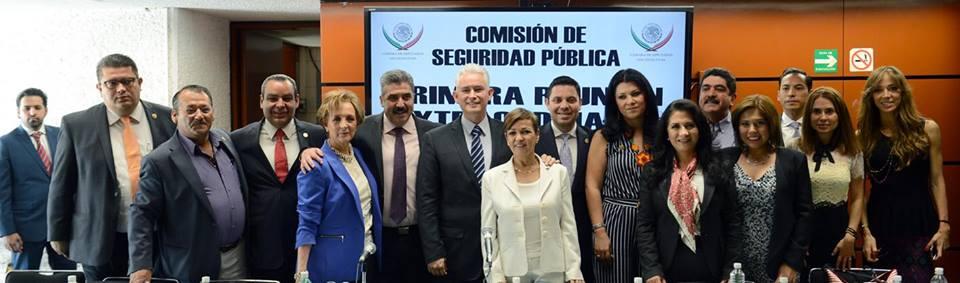 Everardo Comision de Seguridad Publica